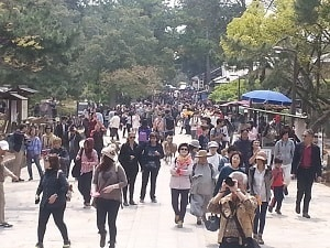 Tourist crowds