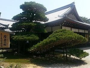 Kinkakuji gardens (goldern pavilion)