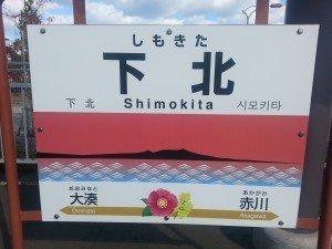 Shimokita pensulia